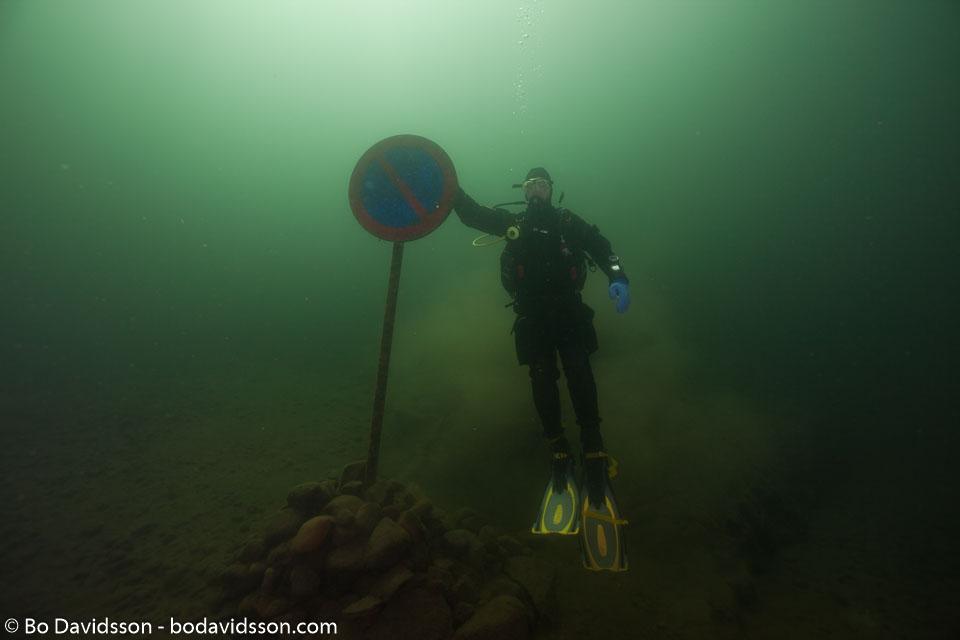 BD-110806-Stora-Lund-4804-Homo-sapiens.-Linnaeus.-1758-[Diver].jpg